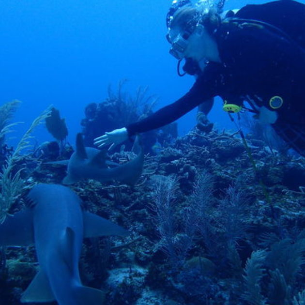 瑪丹娜以歌讚頌的美麗海島   純樸環保的潛水勝地-Belize San Pedro
